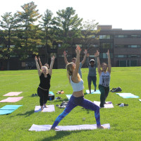 Students doing Yoga on the lawn