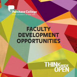 Faculty Development Opportunities brochure cover