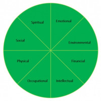 8 areas of wellness: spiritual, emotional, environmental, financial, intellectual, occupational, ...
