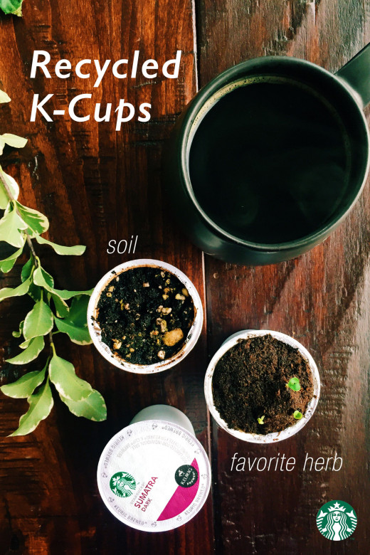k cups with dirt and herbs