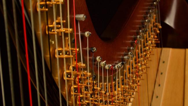 harp instrumental performance purchase college. Black Bedroom Furniture Sets. Home Design Ideas
