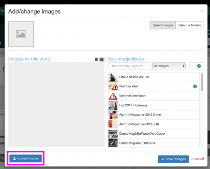 Upload Image to Story dialog box