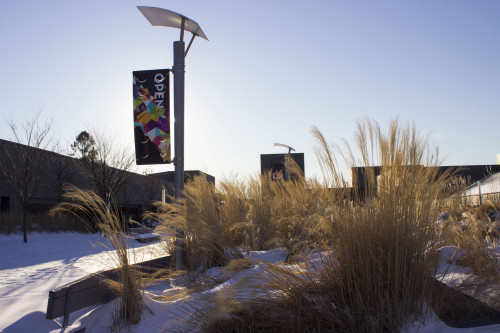 Winter Campus Scene 2