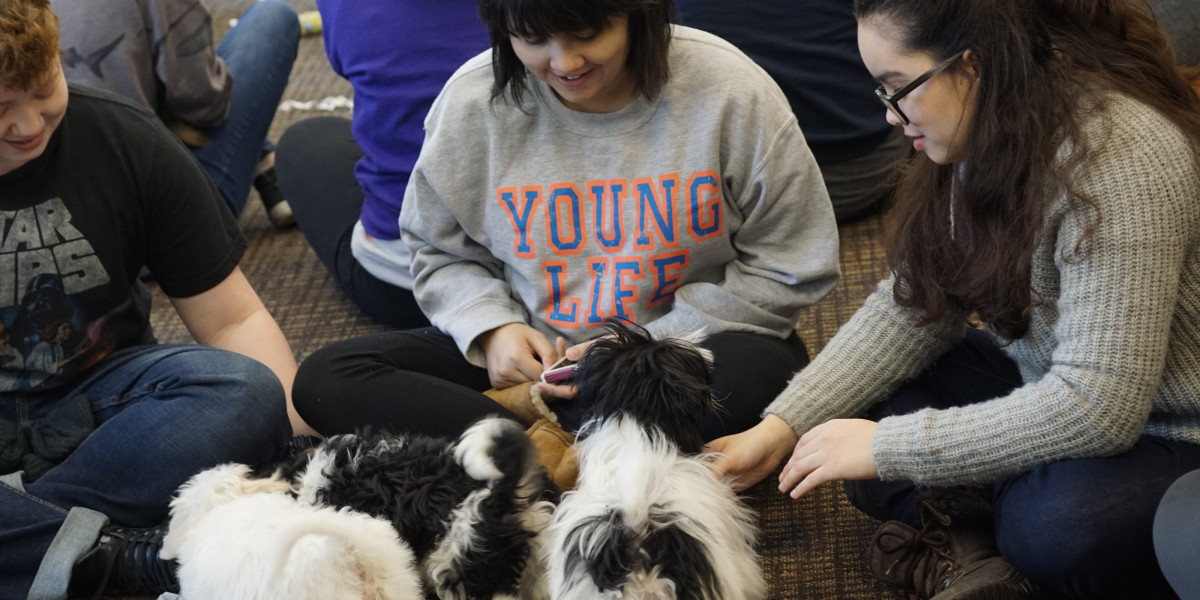 Puppy Therapy! Courtesy of Psychology...