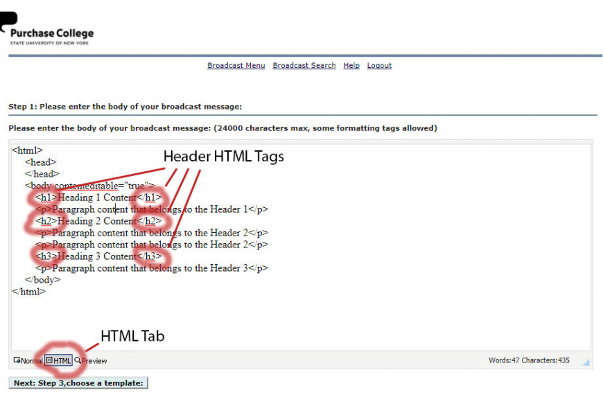 In the html tab of the broadcast email system, add html header tags to your email.