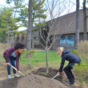 Student and staff member digging ground to plant a tree in front of residence building.