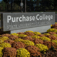 Purchase College sign at front with orange and gold mums.