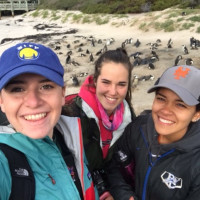 Kelly Hayes '19, Mary Adams '17, and Briana Leon '17 on the beach with penguins on Boulder Beach
