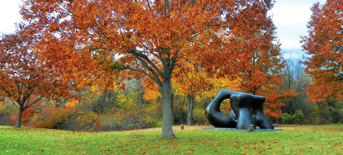 Henry Moore in Fall