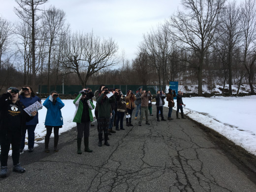 Purchase ENV students count birds as part of an international project to track bird populations  February 19, 2018
