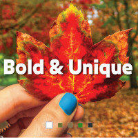 bold and unique written in text with a background image of a hand holding a single bright red leaf in a fall landscap...