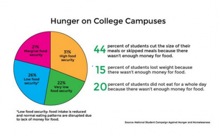 Hunger on College Campuses pie chart