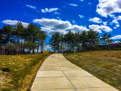 Walking Path at Purchase College