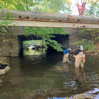 Two dedicated students out in Blind Brook assessing nutrient content, temperatures, and dissolved...