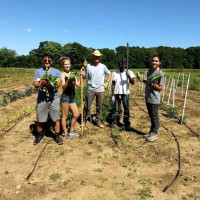 Sam and other gardeners working in summer 2018