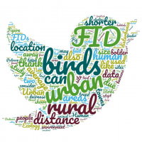 Word cloud for this group's project looking at bird flight initiation distances
