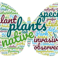 Word cloud for this group's project looking at pollinator preference of native vs invasive plants