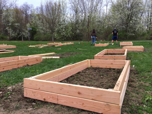 We made 20 garden beds total