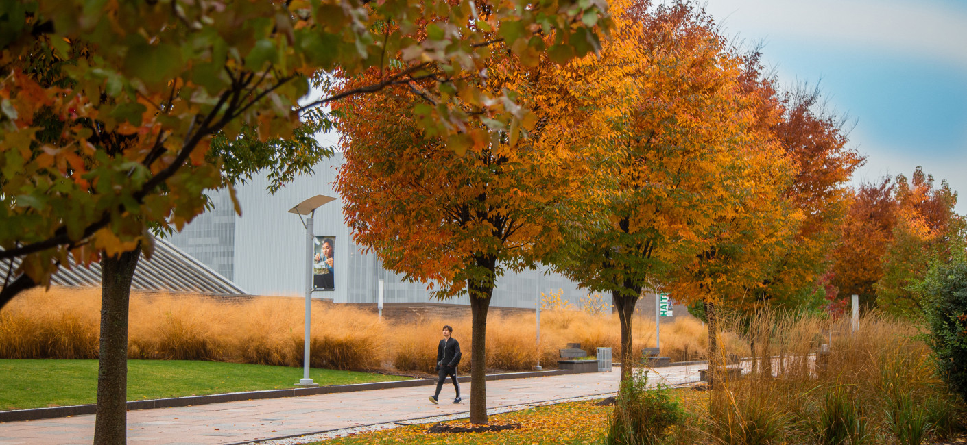 Student walks on campus with fall-colored trees and foliage.