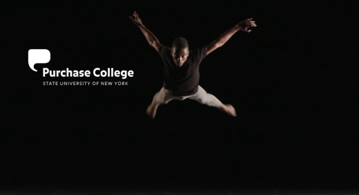 Screenshot of Purchase Dance Co NYLA Preview