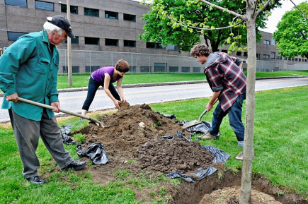 Planting a tree on Clean and Green Day 2012